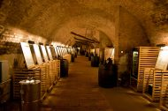 The 100 best Czech wines in 1 room