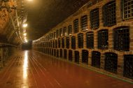 A tour through the unique cellars of Chateau Valtice