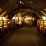 Pálavská galerie vín